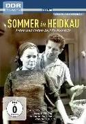 Cover-Bild zu Sakowski, Helmut: Sommer in Heidkau