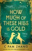 Cover-Bild zu Zhang, C Pam: How Much of These Hills is Gold (eBook)