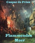 Cover-Bild zu Flammendes Meer (eBook) von Fries, Caspar de