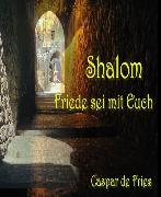 Cover-Bild zu Shalom (eBook) von Fries, Caspar de