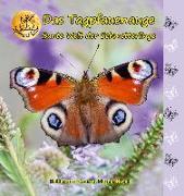 Cover-Bild zu Fischer-Nagel, Heiderose: Bunte Welt der Schmetterlinge