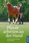Cover-Bild zu Heß-Müller, Karin: Pferde arbeiten an der Hand