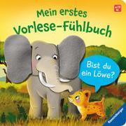 Cover-Bild zu Orso, Kathrin Lena: Mein erstes Vorlese-Fühlbuch: Bist du ein Löwe?