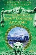 Cover-Bild zu Brennan, Sarah Rees: Legenden der Schattenjäger-Akademie