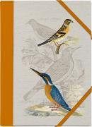 Cover-Bild zu Schöll, Stephan (Gestaltet): Pasta für Nachtigallen Sammelmappe - Motiv Eisvogel