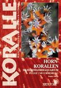 Cover-Bild zu Knop, Daniel: Hornkorallen im Meerwasseraquarium