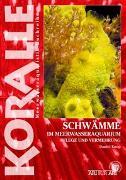 Cover-Bild zu Knop, Daniel: Schwämme im Meerwasseraquarium