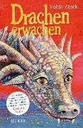 Cover-Bild zu Zinck, Valija: Drachenerwachen (eBook)
