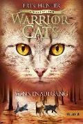 Cover-Bild zu Hunter, Erin: Warrior Cats Staffel 3/06. Die Macht der drei. Sonnenaufgang