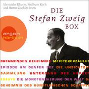 Cover-Bild zu Zweig, Stefan: Die Stefan Zweig Box (Brennendes Geheimnis / Meistererzählungen / Essays)