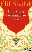 Cover-Bild zu Die vierzig Geheimnisse der Liebe (eBook) von Shafak, Elif