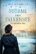 Cover-Bild zu Stürme über Falkensee von Kamecke, Luisa von
