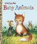 Cover-Bild zu Baby Animals von Williams, Garth