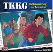 Cover-Bild zu TKKG 175. Nachtwanderung mit Schrecken von Wolf, Stefan