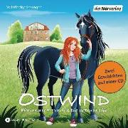 Cover-Bild zu Ostwind - Für immer Freunde & Die rettende Idee von Thilo