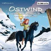 Cover-Bild zu Ostwind. Spukalarm im Pferdestall & Weihnachten mit Hindernissen von THiLO