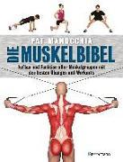 Cover-Bild zu Die Muskelbibel. Aufwärmtraining, Muskelaufbautraining, Kraftausdauertraining, Maximalkrafttraining. Mit und ohne Geräte. Für Anfänger und Fortgeschrittene