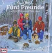 Cover-Bild zu Fünf Freunde 093 und das Geheimnis des Winterwaldes von Blyton, Enid