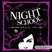 Cover-Bild zu Night School 3. Denn Wahrheit musst du suchen (Audio Download) von Daugherty, C.J.