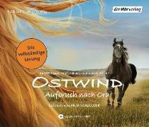Cover-Bild zu Ostwind - Aufbruch nach Ora von Henn, Kristina Magdalena