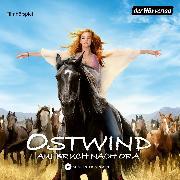 Cover-Bild zu Ostwind - Aufbruch nach Ora (Audio Download) von Schmidbauer, Lea