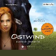 Cover-Bild zu Ostwind (Audio Download) von Henn, Kristina Magdalena