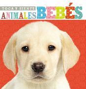 Cover-Bild zu Toca y siente animales bebés von Nelson, Grupo