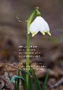 Cover-Bild zu Sexual Crime and Circles of Support and Accountability (eBook) von Winder, Belinda (Hrsg.)