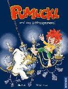 Cover-Bild zu Pumuckl und das Schlossgespenst von Kaut, Ellis