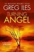 Cover-Bild zu Turning Angel (eBook) von Iles, Greg