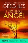Cover-Bild zu Turning Angel: Part 5, Chapters 34 to 42 (eBook) von Iles, Greg