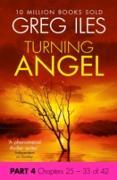 Cover-Bild zu Turning Angel: Part 4, Chapters 25 to 33 (eBook) von Iles, Greg
