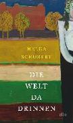 Cover-Bild zu Die Welt da drinnen von Schubert, Helga