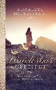 Cover-Bild zu Wunderbar geleitet (eBook) von Mittelstädt, Elisabeth