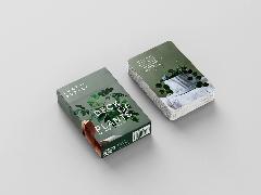 Cover-Bild zu Camilleri, Lauren: Leaf Supply Deck of Plants