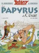 Cover-Bild zu Ferri, Jean-Yves: Le Papyrus de César