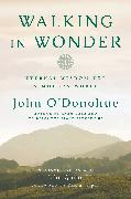 Cover-Bild zu Walking in Wonder von O'Donohue, John