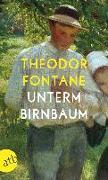 Cover-Bild zu Fontane, Theodor: Unterm Birnbaum