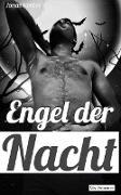 Cover-Bild zu Engel der Nacht (Gay Romance) (eBook) von Kerber, Jonas