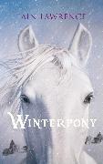 Cover-Bild zu Winterpony (eBook) von Lawrence, Iain