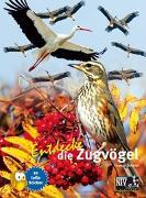 Cover-Bild zu Entdecke die Zugvögel von Schmidt, Thomas