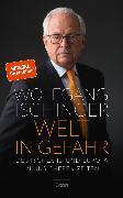 Cover-Bild zu Welt in Gefahr (eBook) von Ischinger, Wolfgang