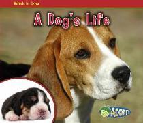 Cover-Bild zu A Dog's Life von Dickmann, Nancy