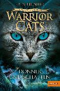 Cover-Bild zu Warrior Cats - Vision von Schatten. Donner und Schatten (eBook) von Hunter, Erin