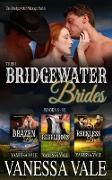 Cover-Bild zu Their Bridgewater Brides: Books 8 - 10 (Bridgewater Ménage Series) (eBook) von Vale, Vanessa