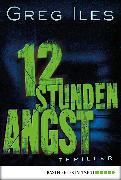 Cover-Bild zu 12 Stunden Angst (eBook) von Iles, Greg