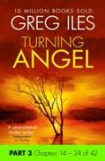 Cover-Bild zu Turning Angel: Part 3, Chapters 14 to 24 (eBook) von Iles, Greg
