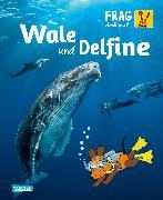 Cover-Bild zu Frag doch mal ... die Maus: Wale und Delfine von Englert, Sylvia