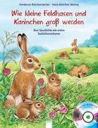 Cover-Bild zu Kleine Feldhasen und Kaninchen werden groß von Reichenstetter, Friederun