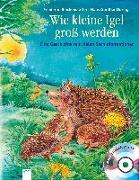 Cover-Bild zu Wie kleine Igel gross werden von Reichenstetter, Friederun